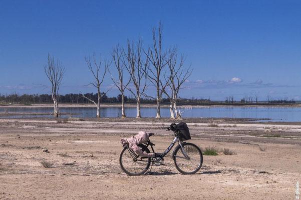 In Carhué können Fahrräder gemietet werden, um ins 8 km entfernte Epecuén zu kommen