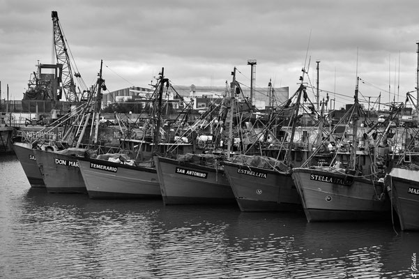 Mar del Plata, Hafen