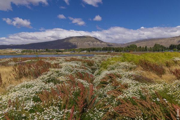 Naturschutzgebiet Laguna Nimez