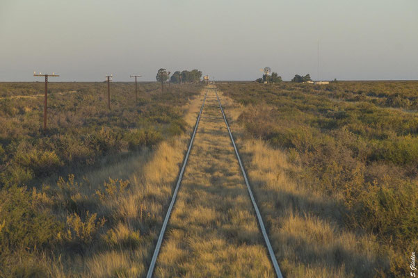 los geht die Fahrt durch  die Steppe, dem Sonnenuntergang entgegen