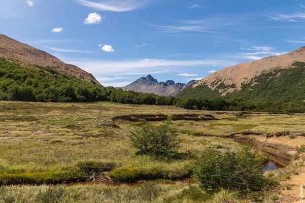 Mallín der Laguna CAB, im Hintergrund der Cerro Negro