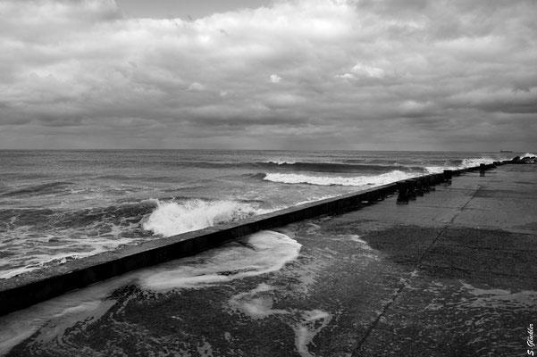 Mar del Plata, am Hafen