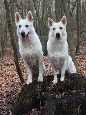 links steht der Bruder und rechts die Schwester