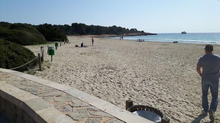 Erkunden von Strand und Umgebung