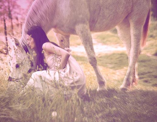 foto di matteo deiuri- fotografia a cavalli a erbusco franciacorta brescia