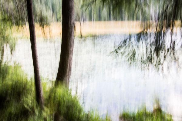 at my lake