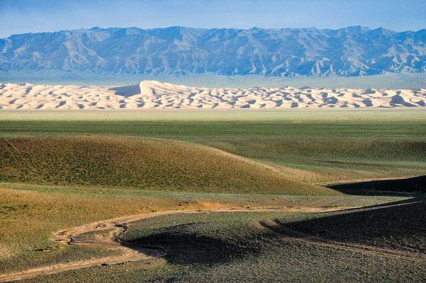 Dunes de Konghor (Désert de Gobi)