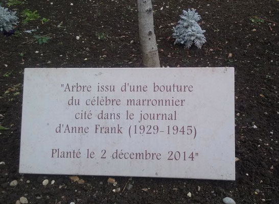 Place Marc Aron Lyon 3ème