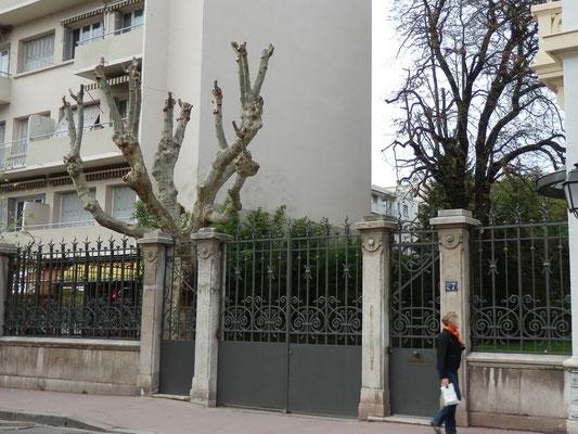 57 avenue des Frères Lumière, villa Winckler