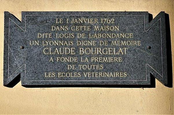 9 avenue Félix Faure Lyon 7ème