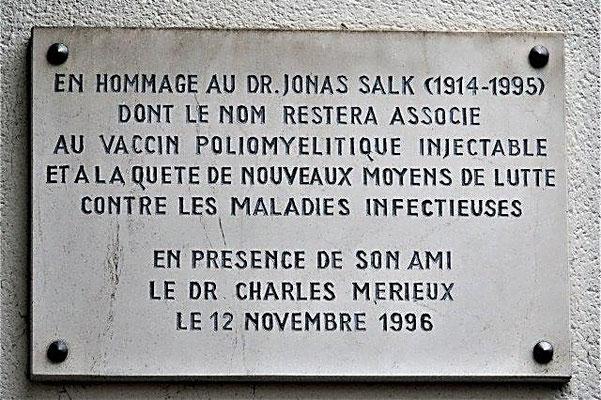 8 rue Jonas Salk Lyon 7ème