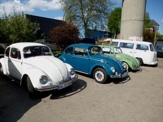 VW Käfer und Transporter