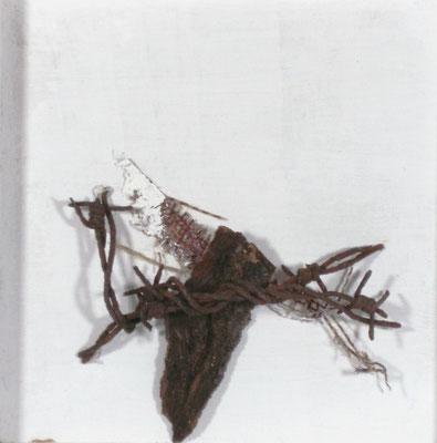 """Reliquar III"" - Holz/Rinde/Stacheldraht - 30 x 30 - 2011"