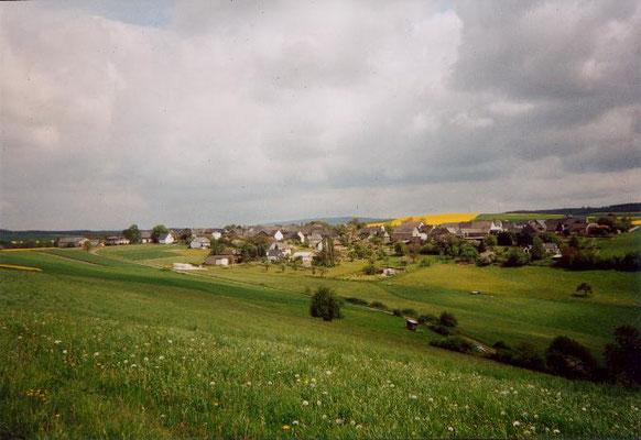 Blick auf Fronhofen
