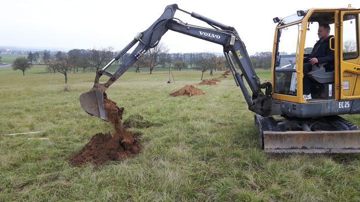 Pflanzlöcher graben - für Menschen eine Strapaze. Der Bagger schaffte 11 Löcher in 90 Minuten!