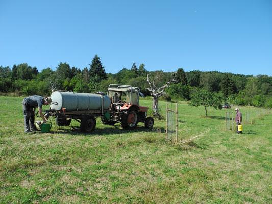 Es ist auch möglich, mit einem langen Schlauch die Bäume direkt zu versorgen. Aber dann ist die Abgabemenge schwer zu kontrollieren.