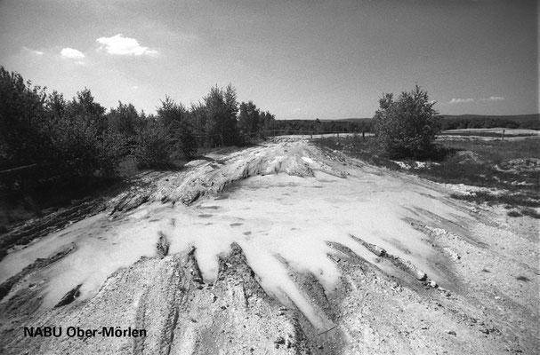 Der Eichkopf diente bis Ende der 1990er Jahre als Panzerübungsplatz. Foto aus dem Jahr 2000
