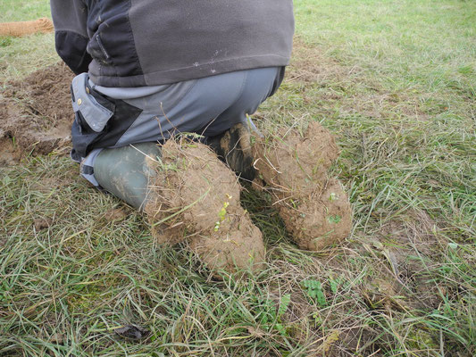 Was dem Inuit sein Schneeschuh, ist dem Baumpflanzer sein Erdschuh