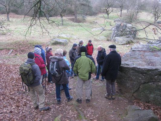 Wanderführer Matthias Möbs erläutert Geologie und Botanik des Steinbergs