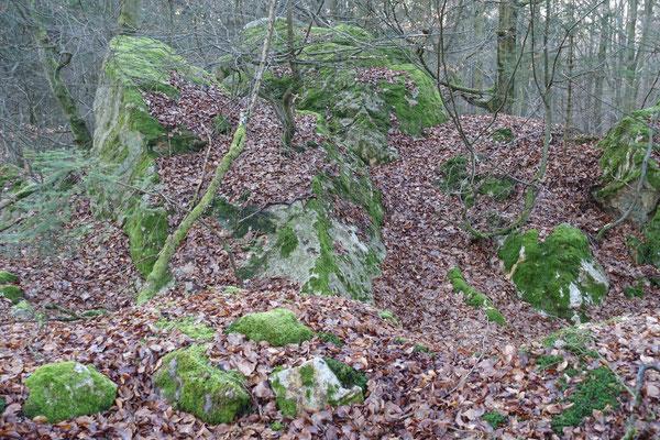 Die Felsen am Wormstein fallen durch die starke Bemoosung auf.