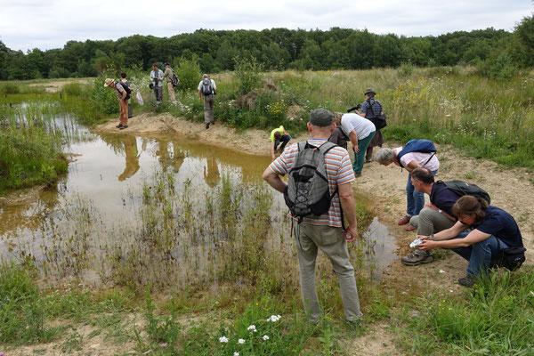 Bei aller Neugier achten die Teilnehmer darauf, keine Schäden im Biotop anzurichten