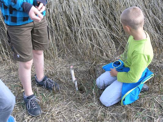 Die Kinder haben den Auftrag, die Länge der Fallröhre zu messen