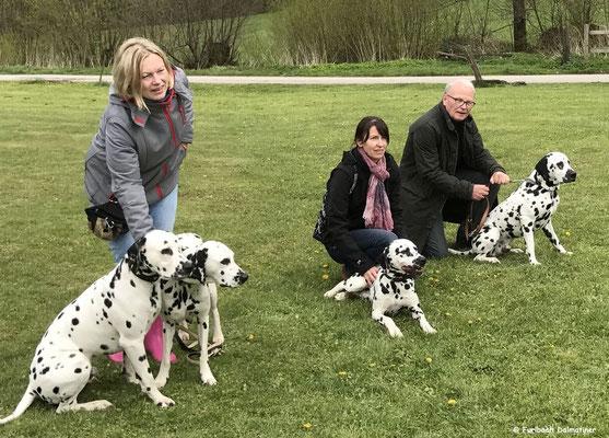 K-Wurf von links nach rechts, Kurt Russel vom Furlbach, Mama Fanny vom Furlbach......29.04.2017