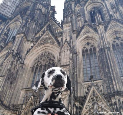 New York vom Furlbach DOM CHALLENGE Kölner Dom...07.06.2020