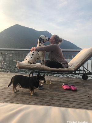 Kurt Russel vom Furlbach mit seinem geliebten Frauchen im Urlaub