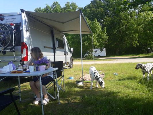Campingfeeling Fanny vom Furlbach und Norma N`Jeane von Abasko...05.06.2021