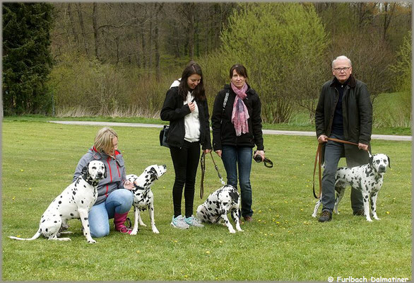 K-Wurf vom Furlbach mit Mama Fanny vom Furlbach...29.04.2017
