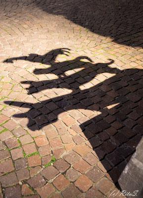 der Schatten der Stadtmusikanten