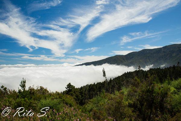 Auf dem Weg zum Teide - über den Wolken