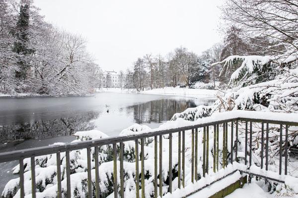 Winter am Wallgraben