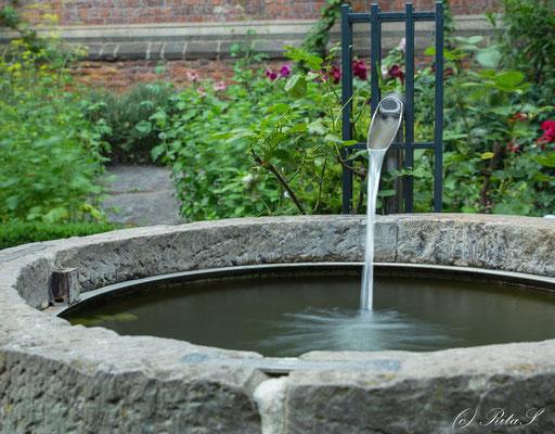 Der Brunnen im Bibelgarten  des St. Petri Domes.