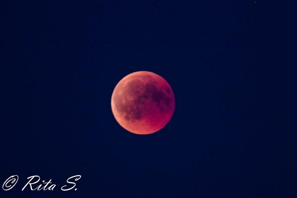 Der Mond während der Mondfinsternis - in Bremen war dieser nur sehr leicht schemenhaft in rötlicher Färbung zu sehen