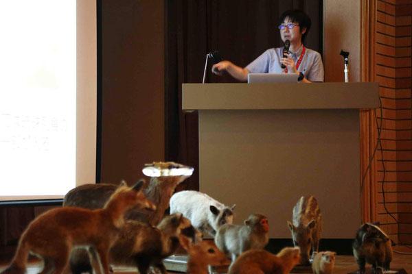 第1回公開講座「千葉の動物とどう関わる?」の様子