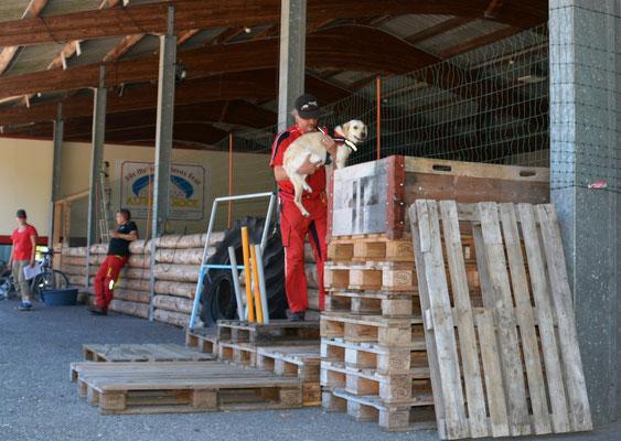 Daniel und Meghan Fendawood Nutmeg Anoplophora Spürhunde Schweiz