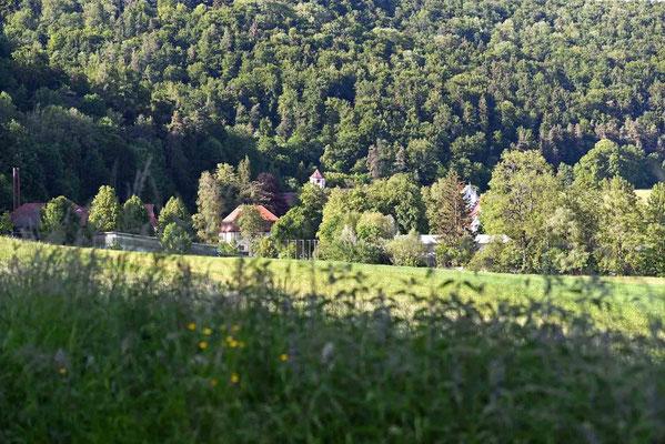 © Traudi - Kloster, eingebettet im grünen Urspringtal