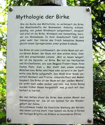 Die Mythologie der Bäume -  © Traudi