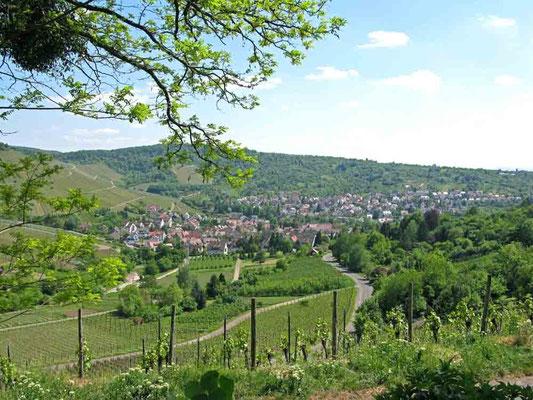 Grabkapelle Rotenberg Ausblick nach Uhlbach  /  Foto ©Traudi