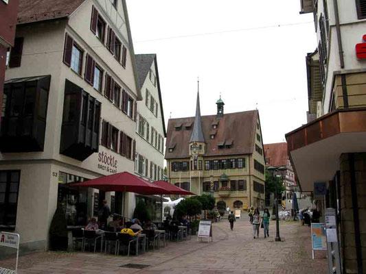 09.06.2010 (c) Traudi  -  Blick zum Rathaus