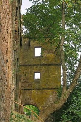 © Traudi - außerhalb der Burgmauer