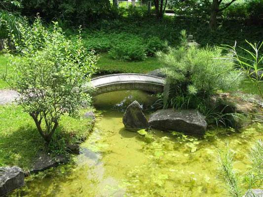 09.06.2010 (c) Traudi  -  Japangarten