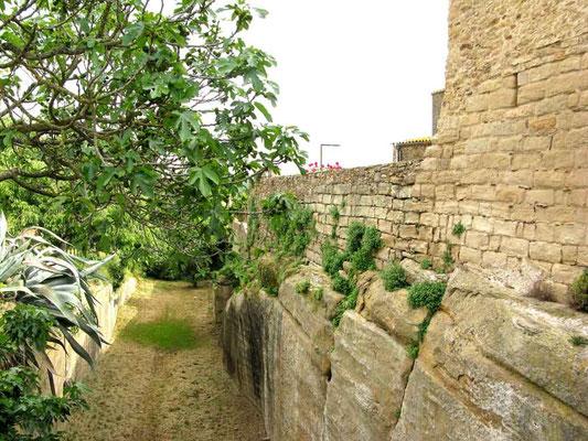 Peratallada, Stadtmauer mit Festungsgraben - ©Traudi