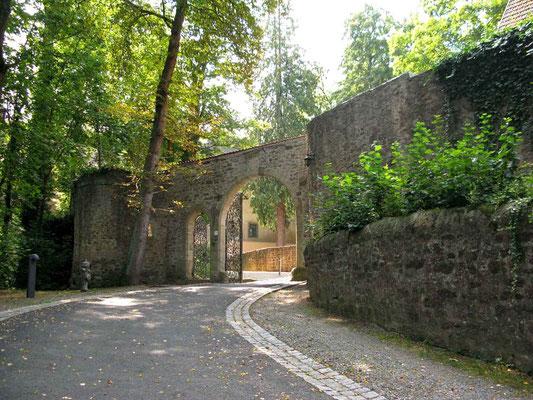 © Traudi  -  Aufgang zum Schloss