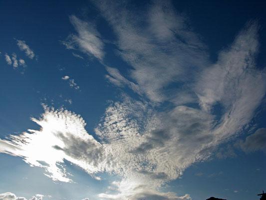 © Traudi - ...kommt ein Engel geflogen...
