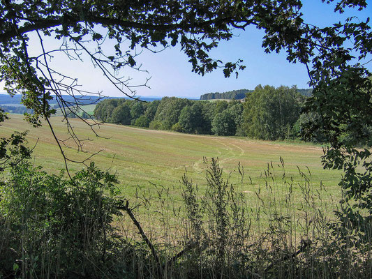 © Traudi - 2008 - Wir gingen quer über die Felder