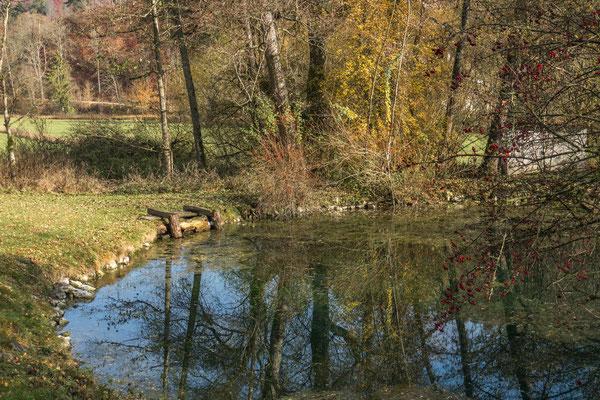 © Traudi – Achtopf in der Nähe vom Kloster Urspring