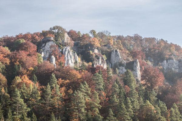 © Traudi - Blick hinüber zur Burgruine Hohengundelfingen